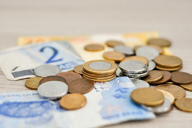 cizí měna