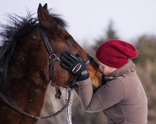 políbení koně